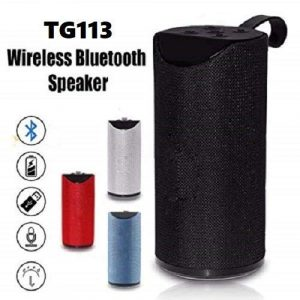 portable wireless speaker